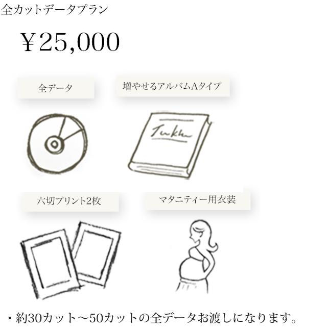 maternity_plan02